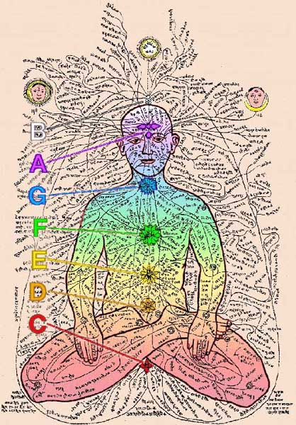 Colours and notes aligned to chakras